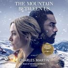 The Mountain Between Us: A Novel (Audiobook)