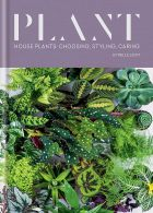 Plant. House plants: choosing, styling, caring
